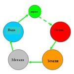 Медицинские проблемы Бацзы. Часть V. Патология «мать» — «сын»