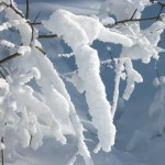 Сезон «Дахань» («Большие холода»)