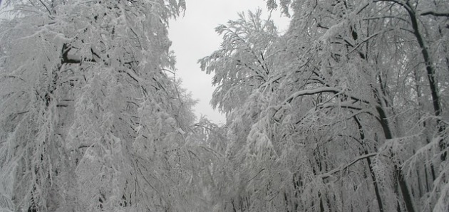 Сезон «Сяохань» (Малые холода)
