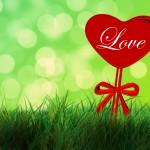 Ищем любовь по бацзы