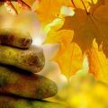 Удачные дни в октябре