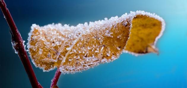 Сезон «Лидун» ( Становление зимы)