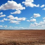Образ земли в бацзы