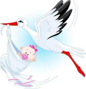 беременность в бацзы