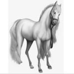 Земная ветвь Лошадь
