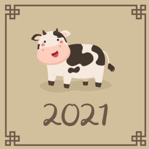 Прогноз по личным картам бацзы на 2021 год