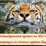 Практикум по личным картам бацзы на 2022 год