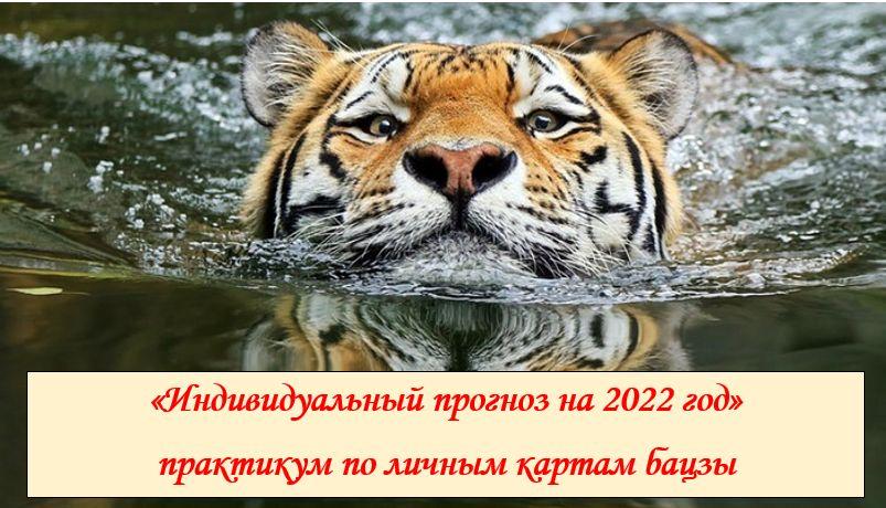 Прогноз по личным картам бацзы на 2022 год