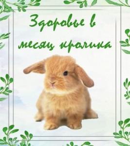 здоровье в месяц кролика